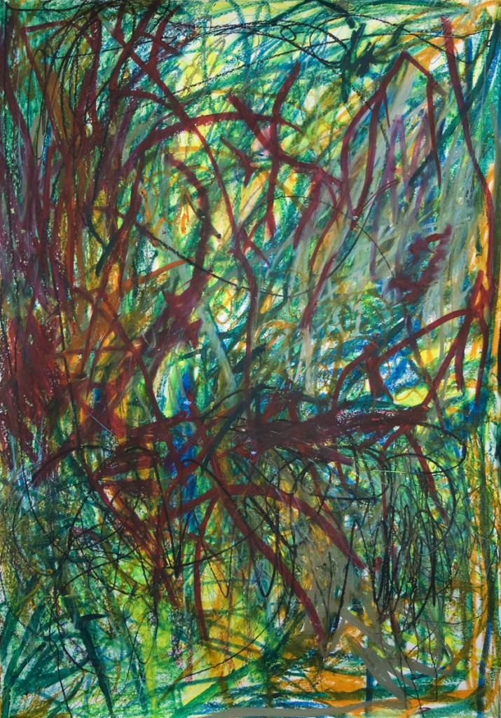 Hernan Cedola, HC3056, 2011, Oil pastel on paper, Paper: 53 x 37 in.
