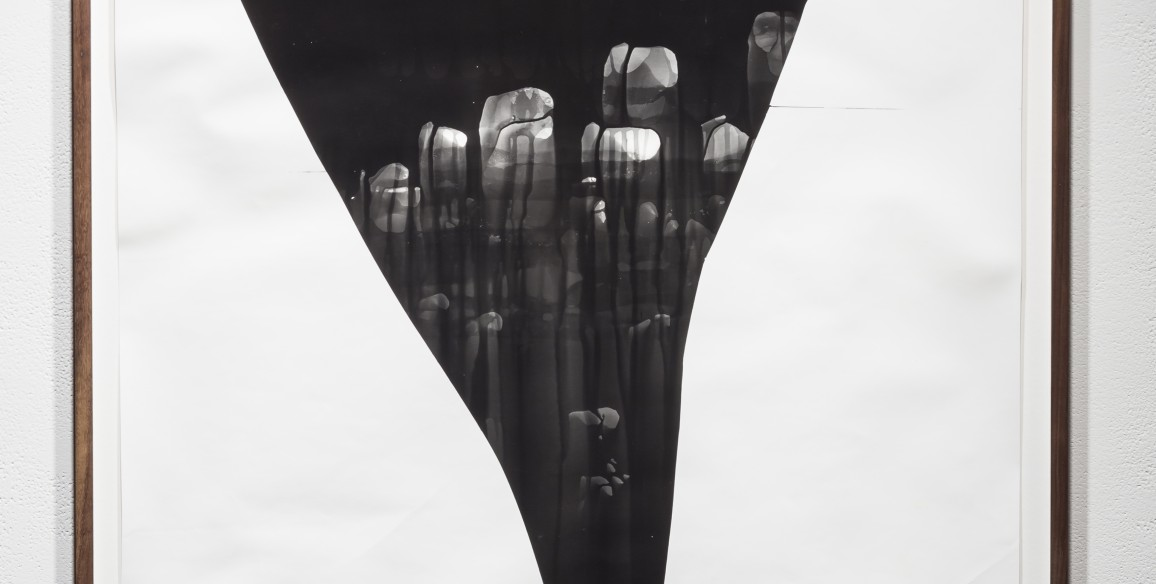 Sheree Hovsepian, Deluge, 2014, unique silver gelatin photogram, Overall: 43 x 32 in.